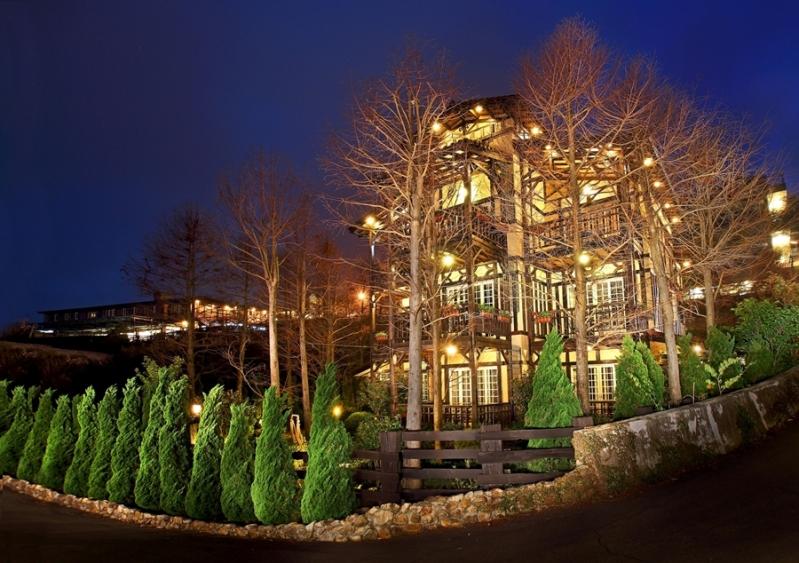 欧式庭院夜景观